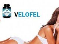 Velofel - asli - official website - forum