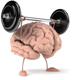 Neurocyclin - untuk ingatan yang lebih baik- malaysia - official website - lazada