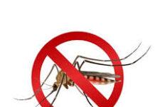 MosquitoBlock - kesan - cara pakai - cara makan - ada di sana efek samping